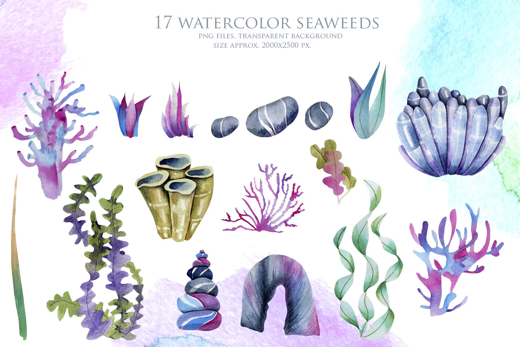 Sea life. Watercolor clip art. example image 3