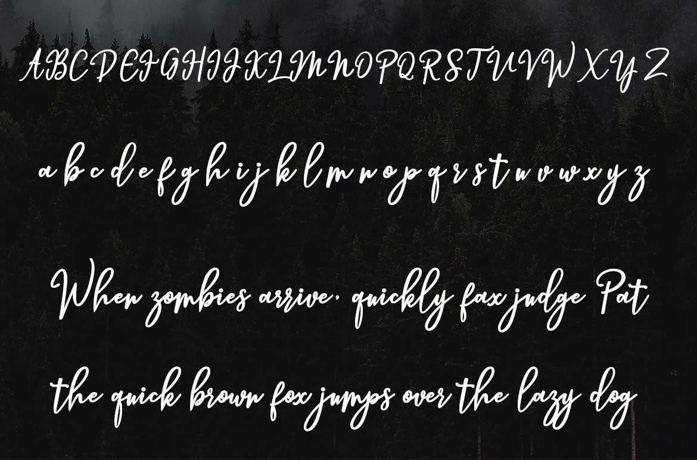 Hendryan Script example image 4