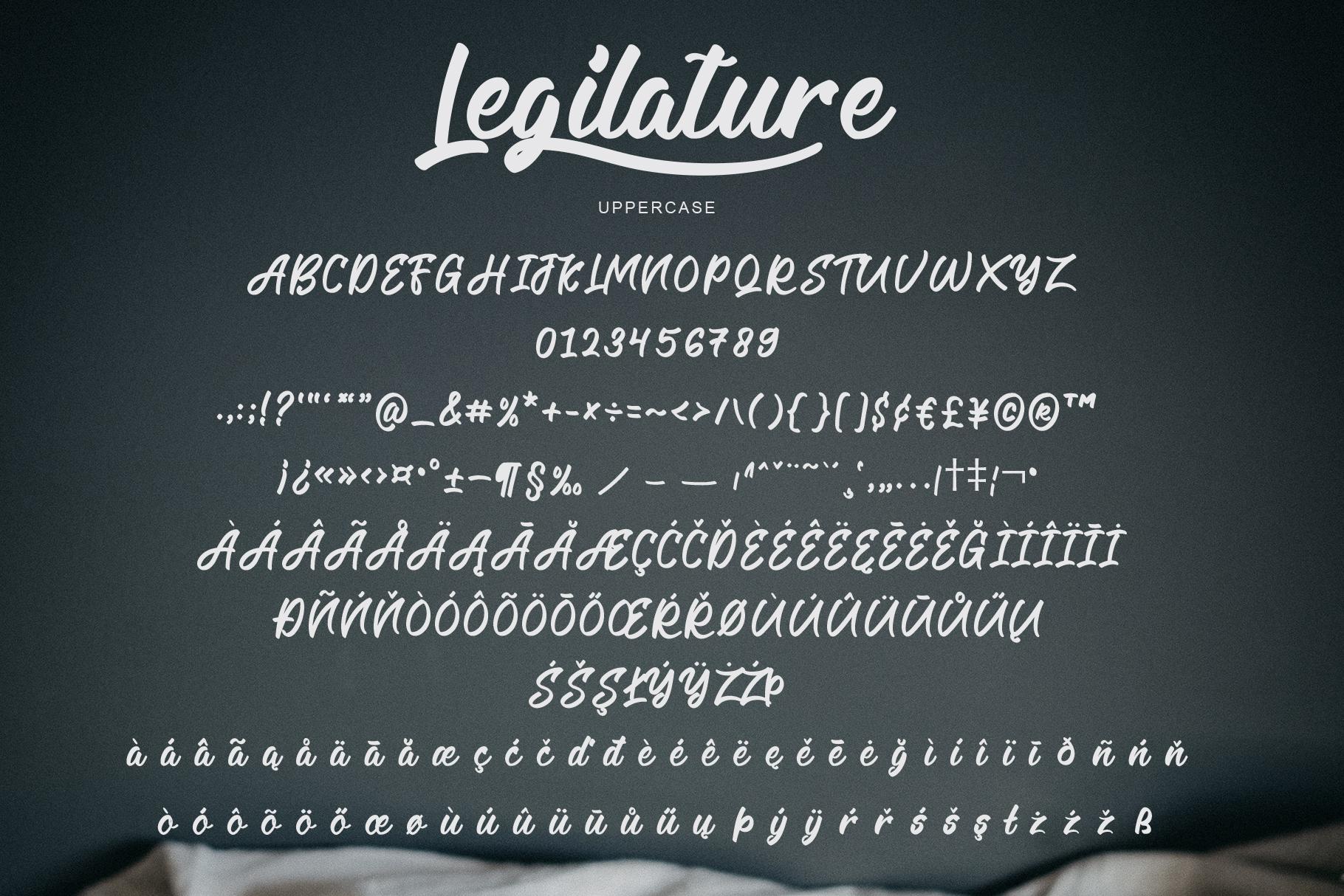 Legilature with BONUS example image 6