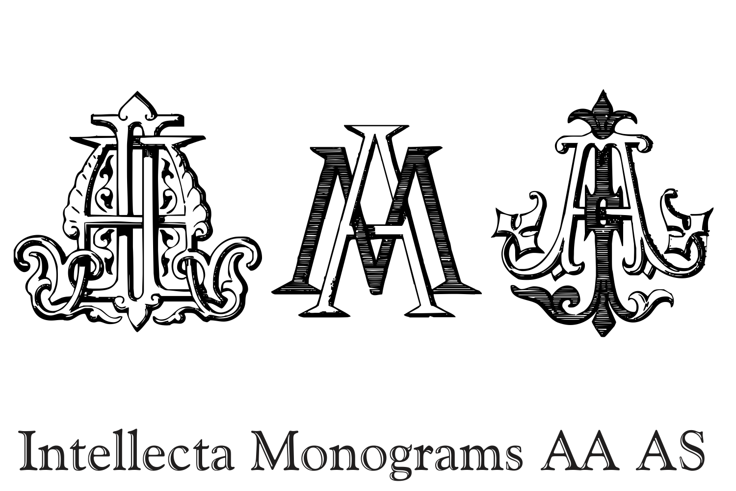 IntellectaMonograms AAAS example image 9
