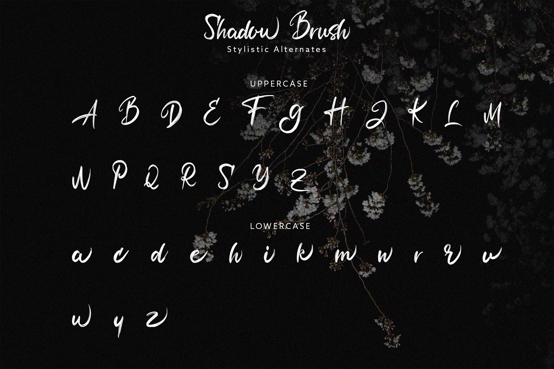 Shadow Brush example image 9