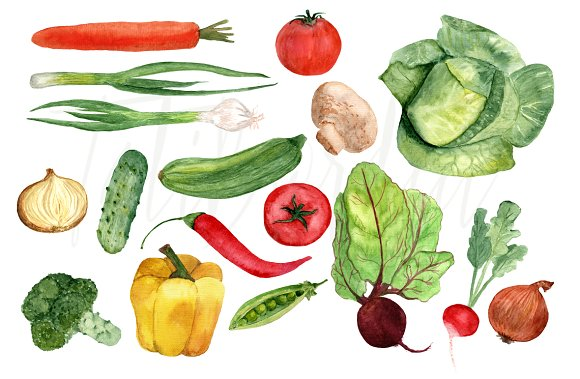 17 Watercolor Vegetables Clip Art example image 2