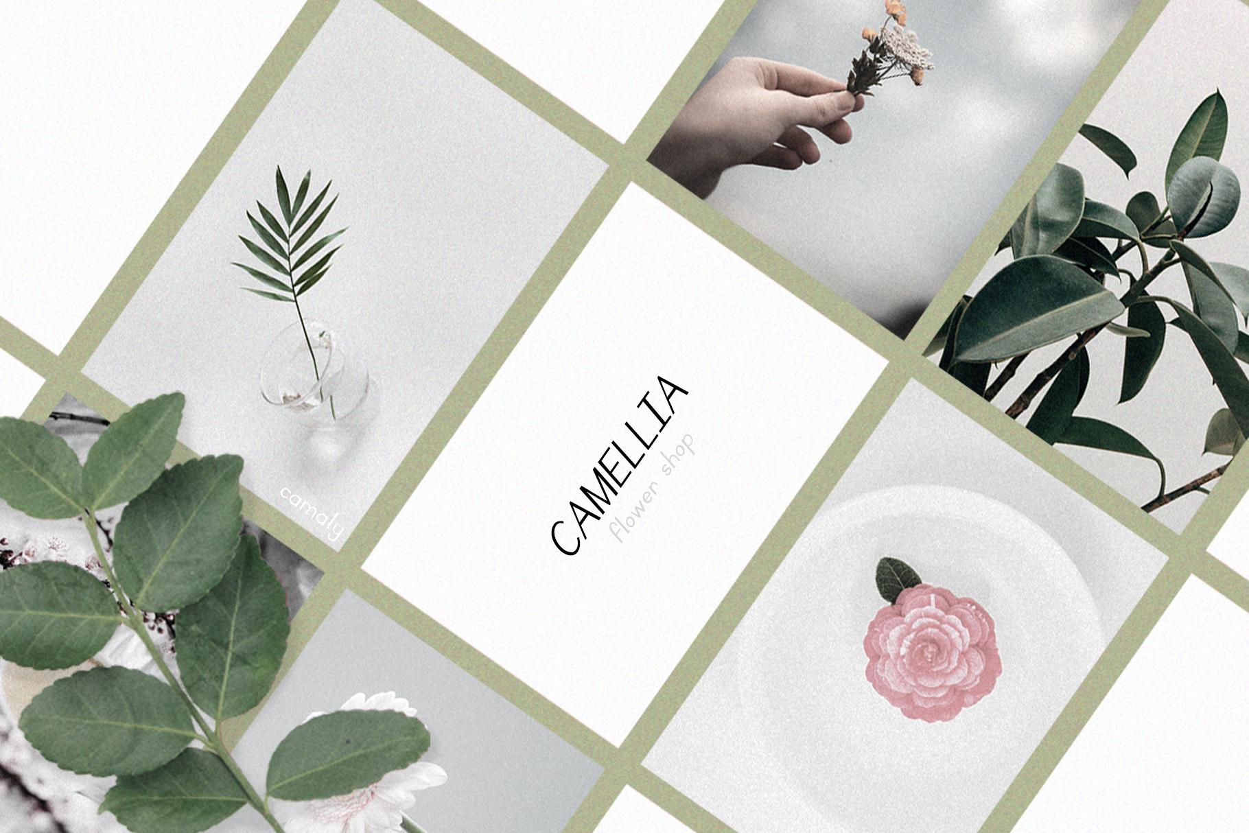 Camaly | san serif example image 2