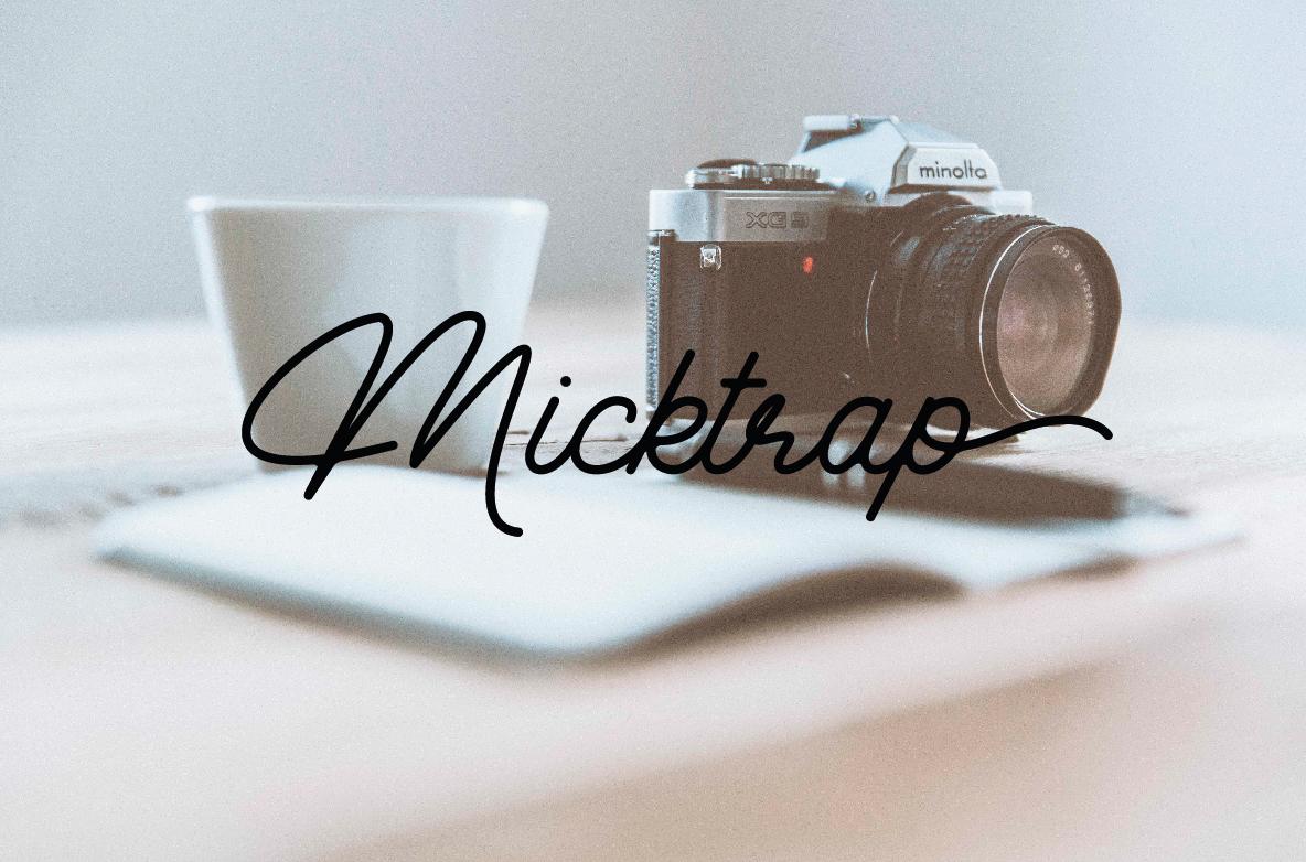 Micktrap example image 1