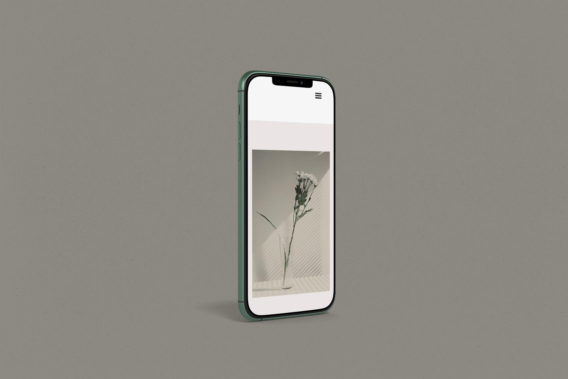 iPhone 11 Pro example image 4
