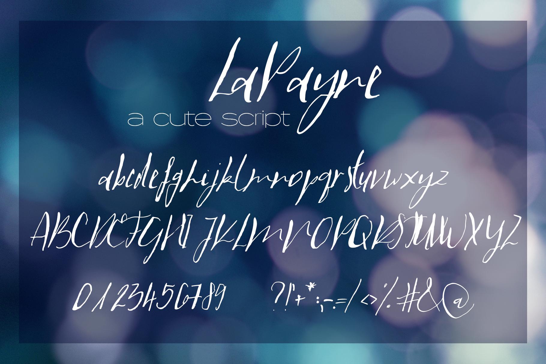 LaPayne Font example image 8