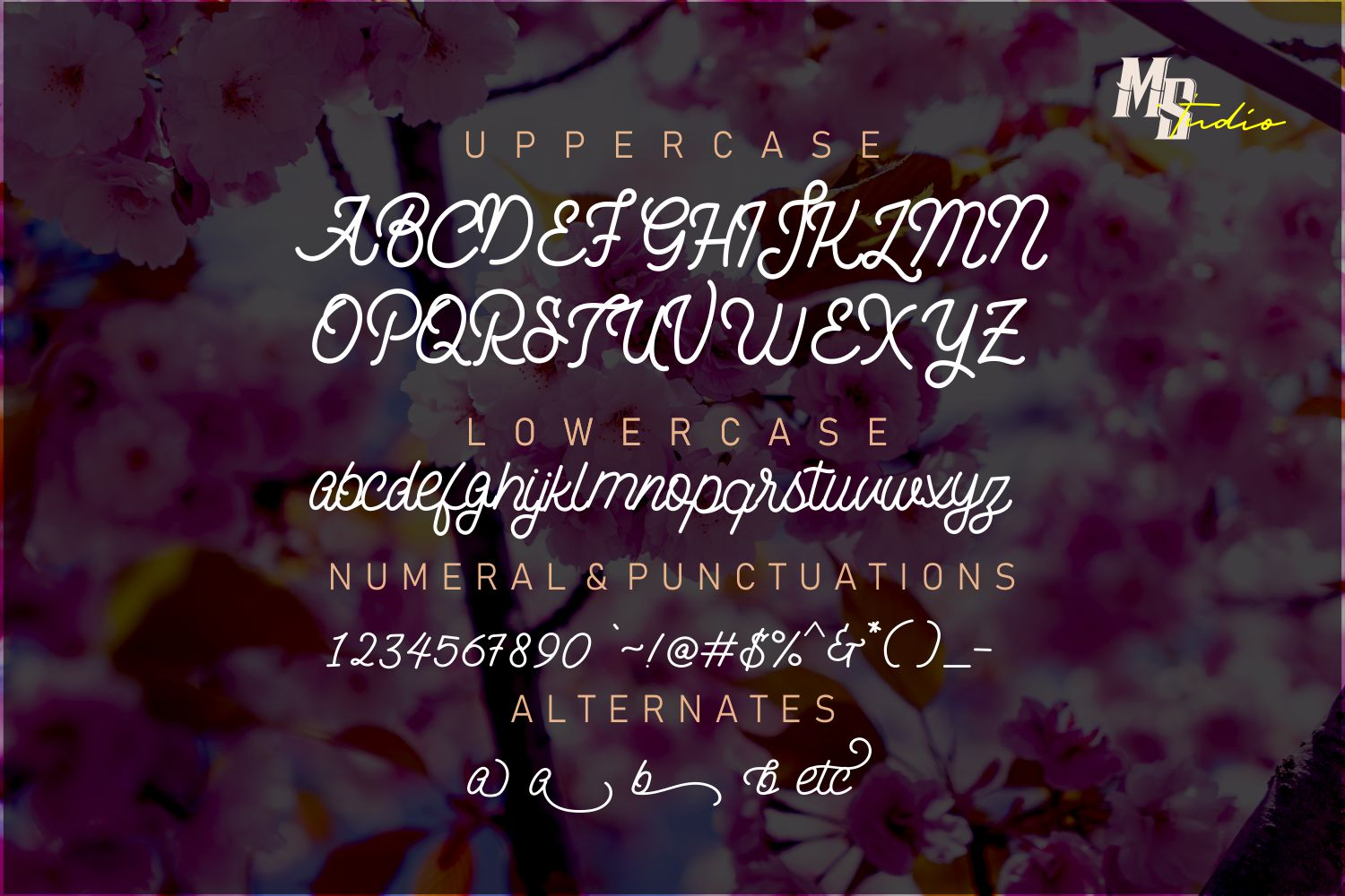 The Breachery Script Font example image 2