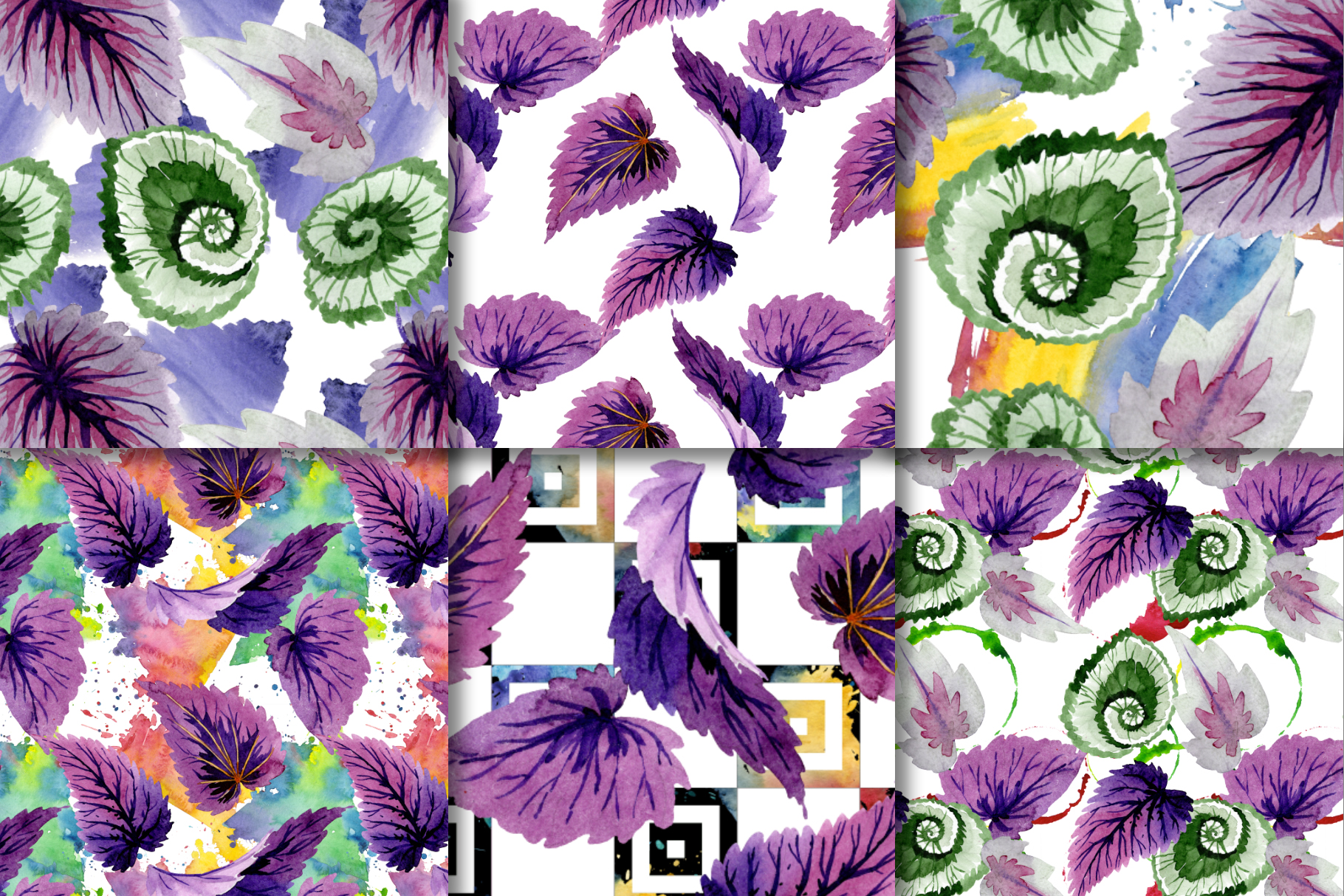 Decorative begonia purple watercolor png example image 7