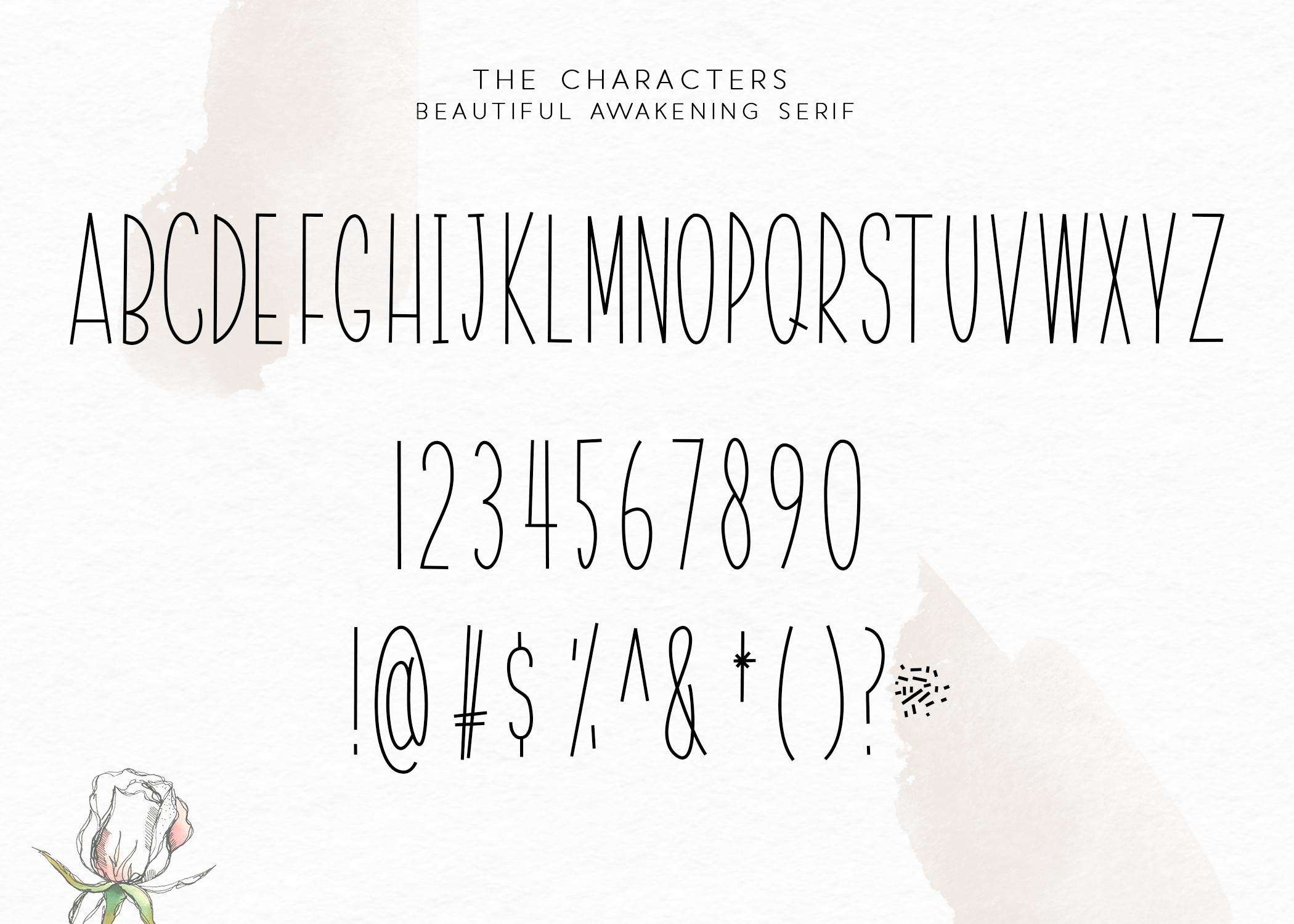 Beautiful Awakening - A Serif & Script Font Duo example image 8