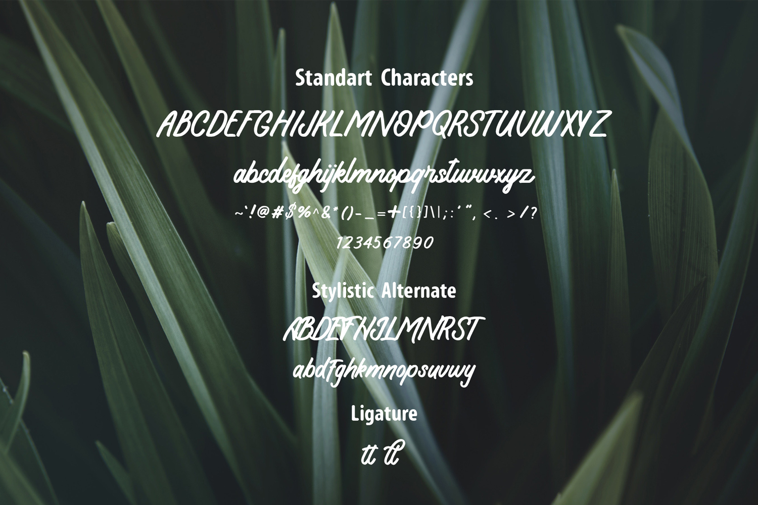 Koeltoerals Fonts example image 6