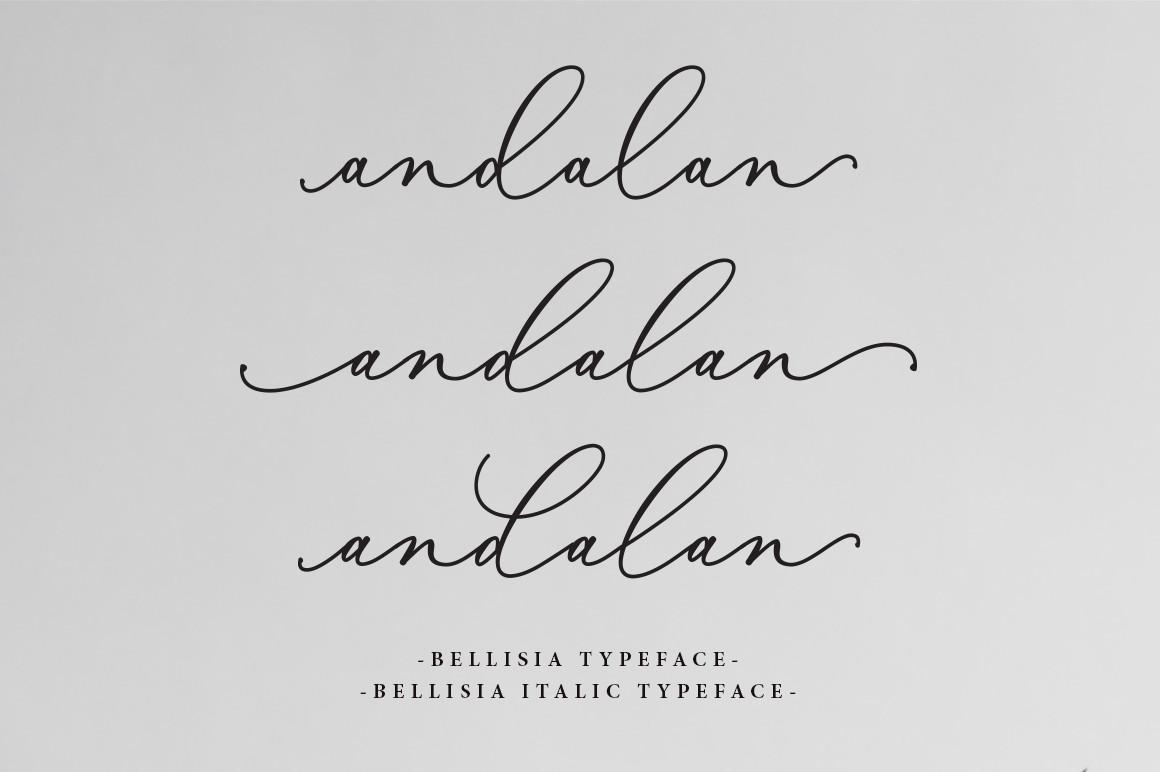 Bellisia Script example image 2