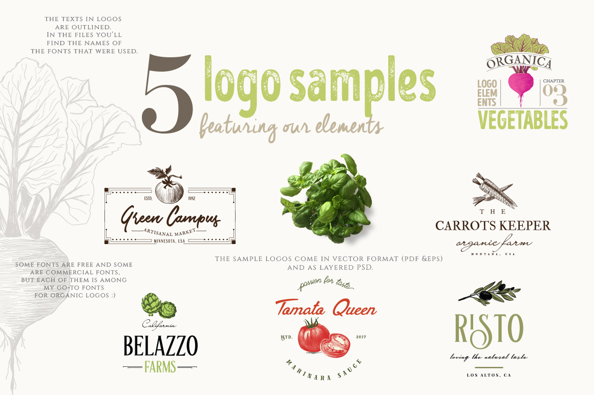 4 IN 1 ORGANIC LOGO ELEMENTS 60% OFF example image 12