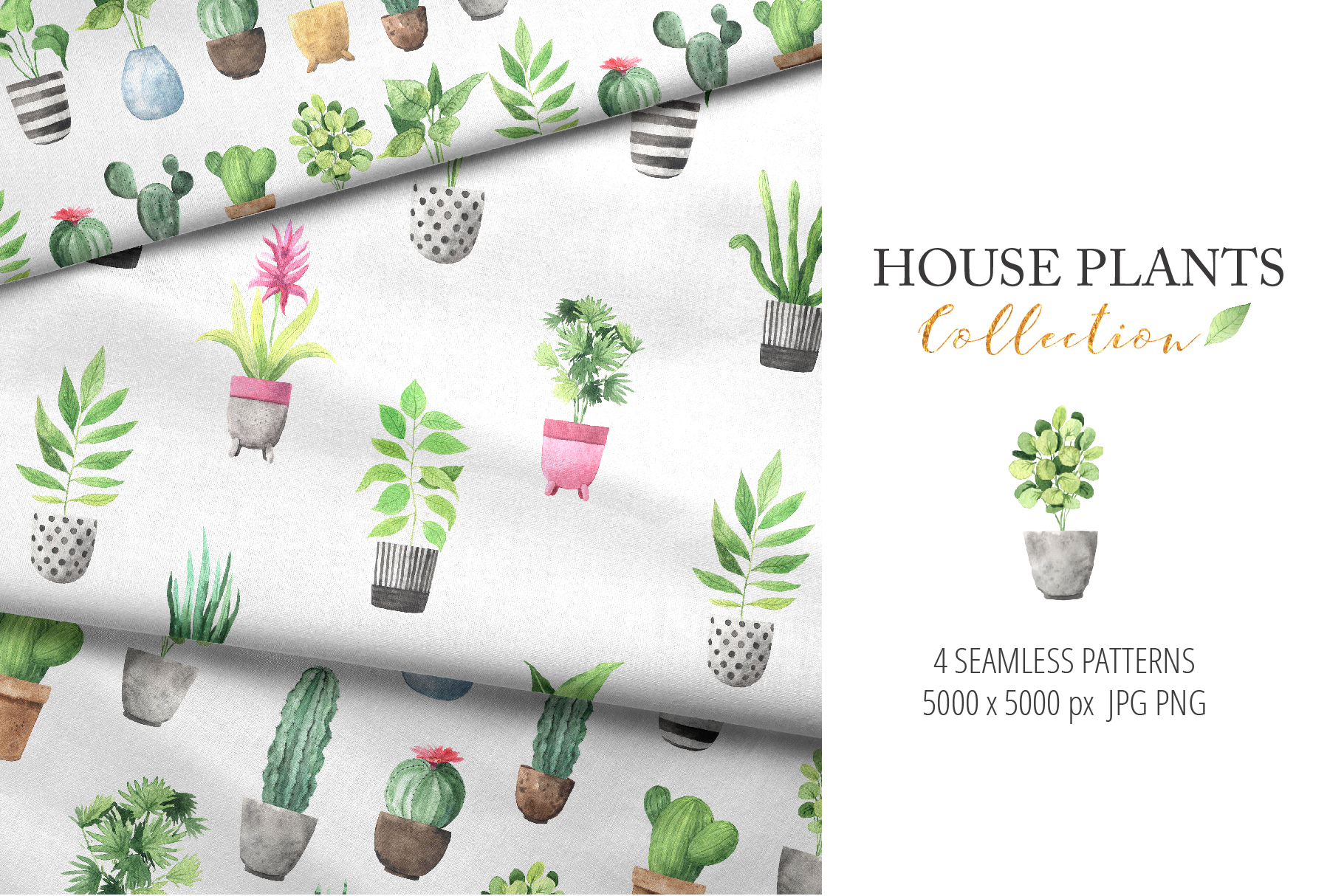 Watercolor House Plants Collection example image 7
