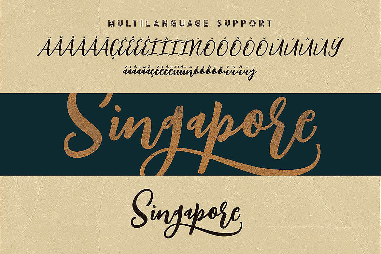 Singapore Script Font example image 8