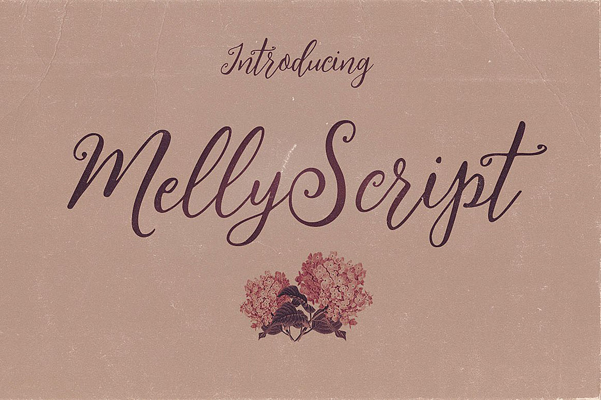 Melly Script Font Duo example image 4