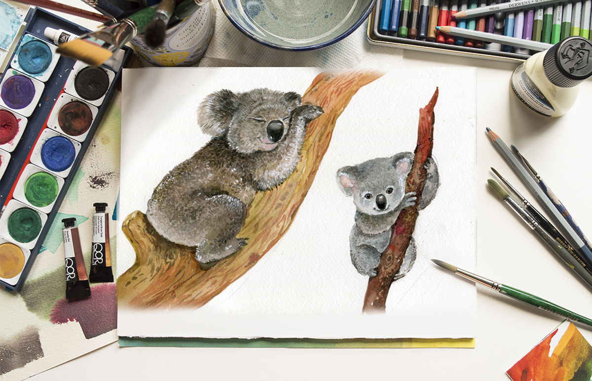 Koala & eucalyptus set illustration example image 7