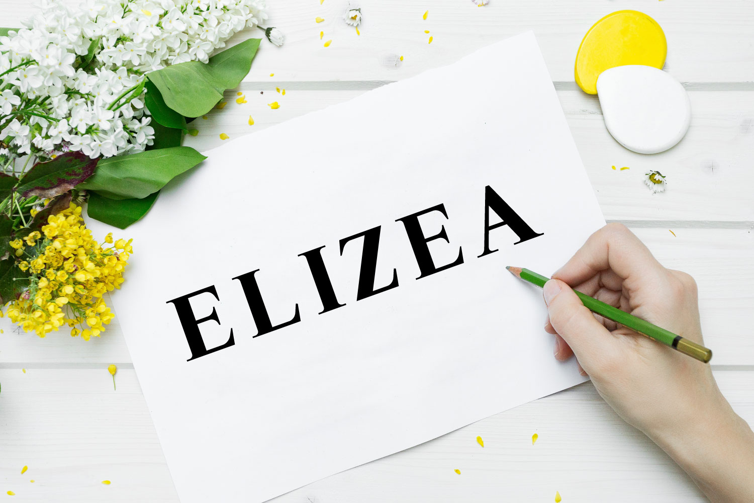 Elizea Font with 14 weights bundle example image 1