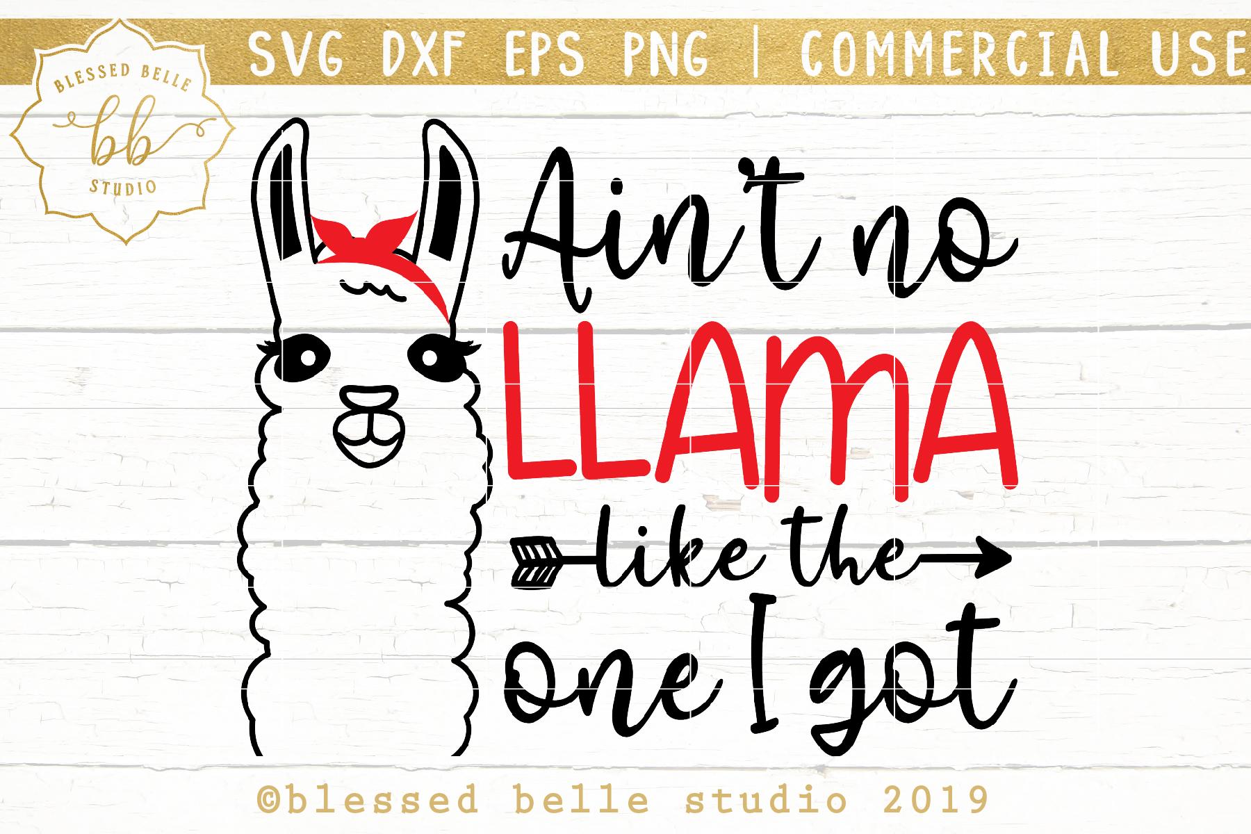 Llama SVG / Aint no llama like the one I got SVG DXF EPS PNG example image 2