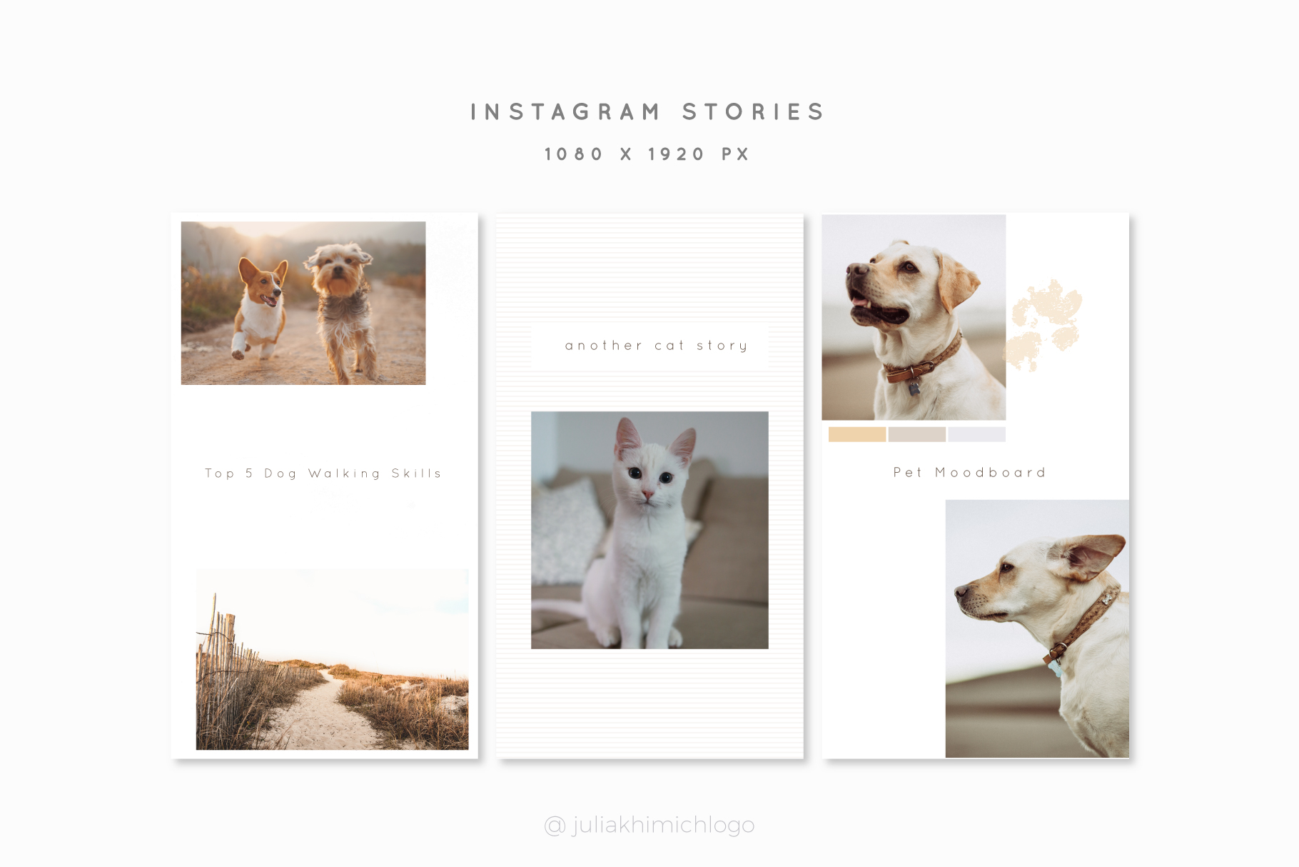 Instagram Post & Stories. Pets example image 14