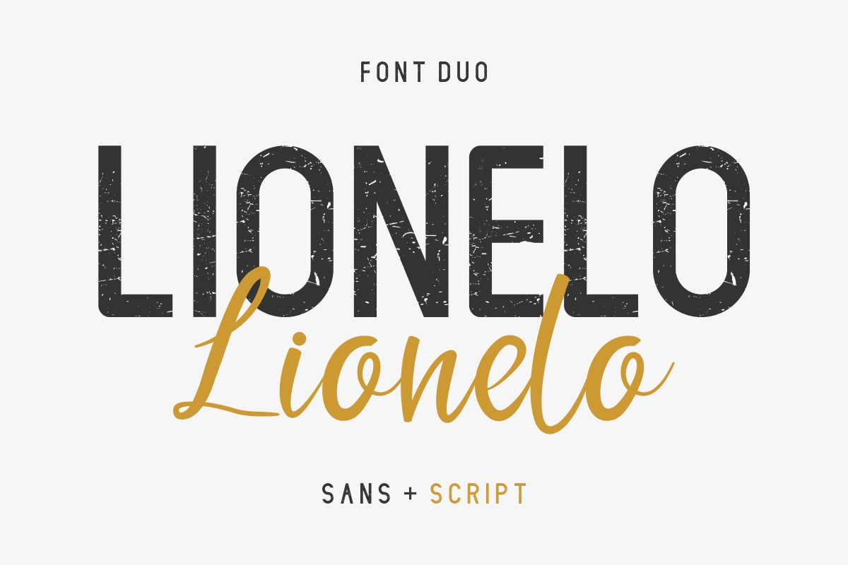 LIONELLO example image 2