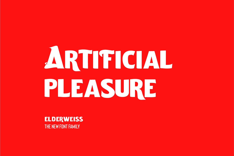 Elderweiss - An Experimental Sans Serif example image 5