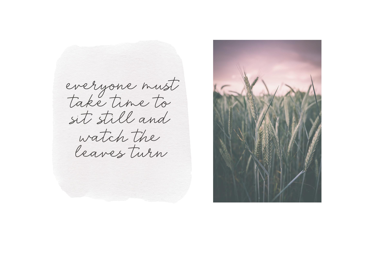 Harvest - A Handwritten Script Font example image 2