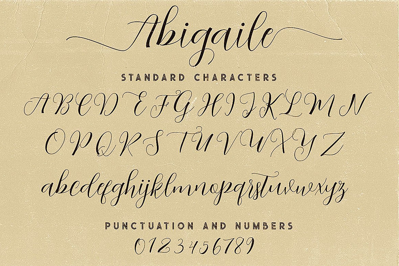 Abigaile Script Font example image 6