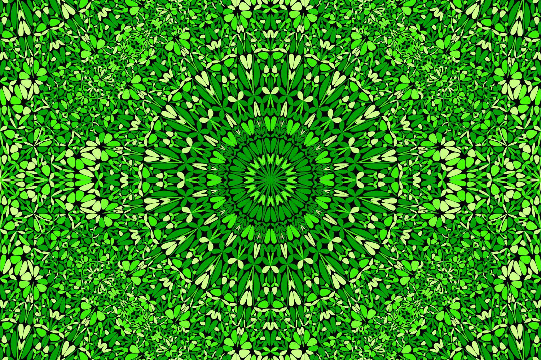 48 Seamless Floral Mandala Patterns example image 16