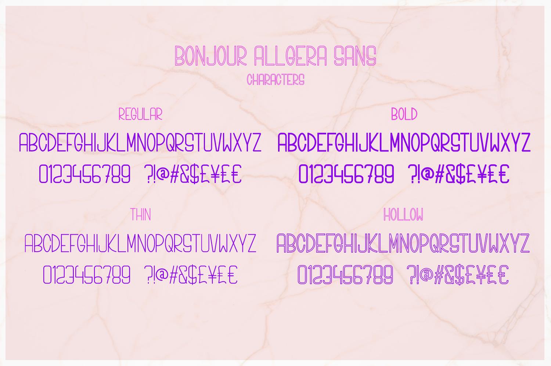 Bonjour Allgera - Font Duo example image 11