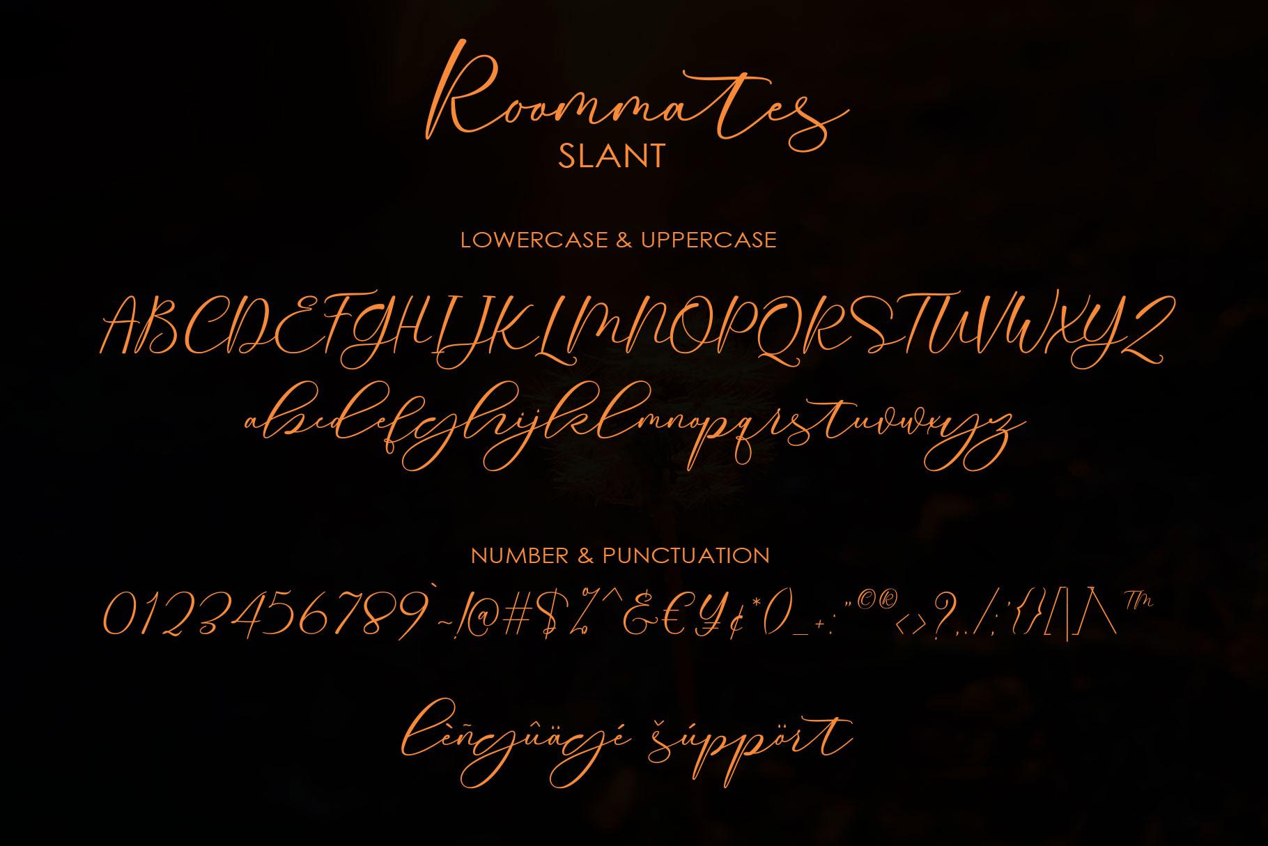 Roommates Script | Reguler & Slant example image 14
