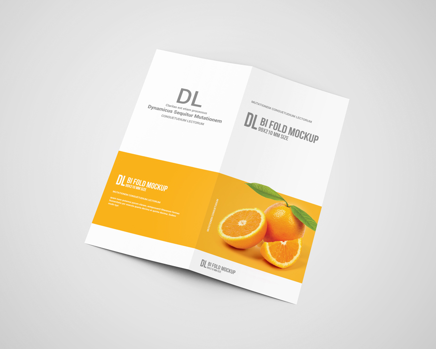 dl bi fold brochure mockup by toasin st design bundles