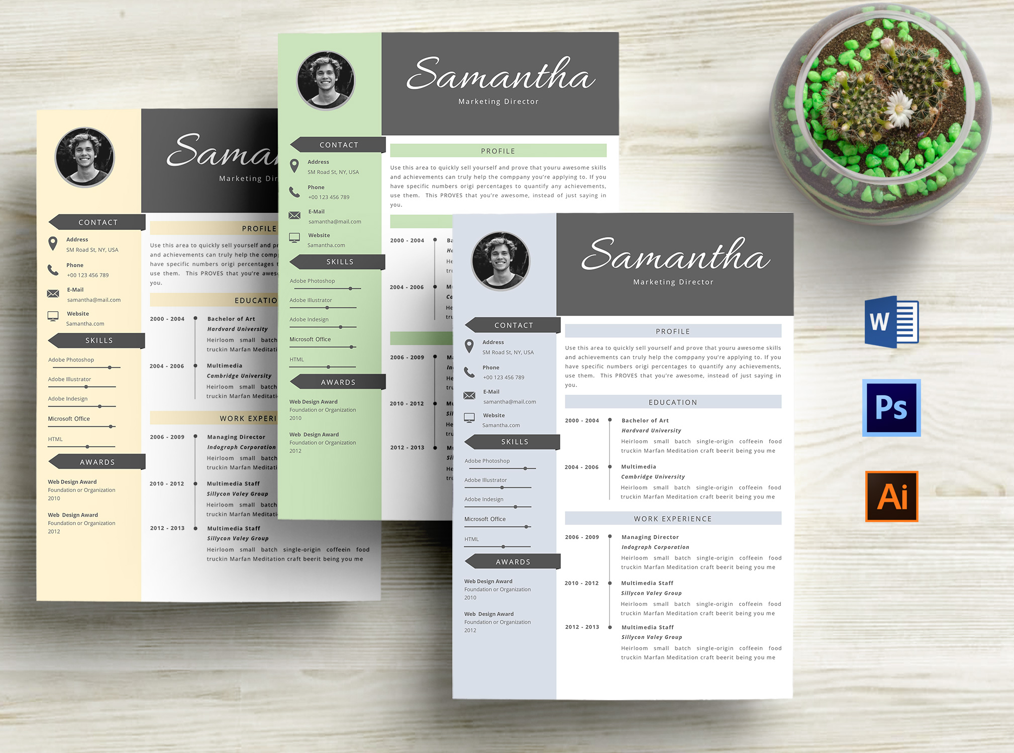Creative CV Resume Template Word example image 1