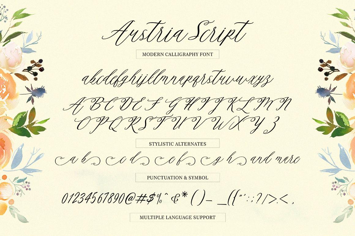 Austria Script example image 9