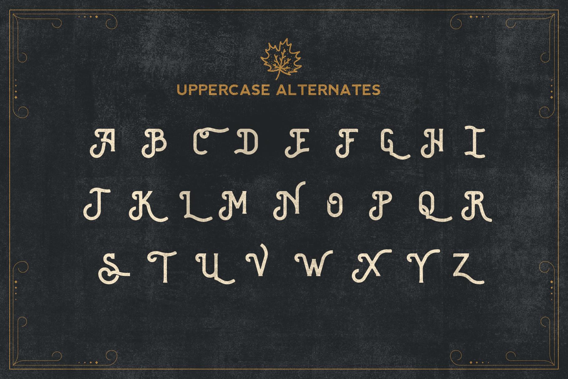 Brewski - Brewery Typeface example image 8