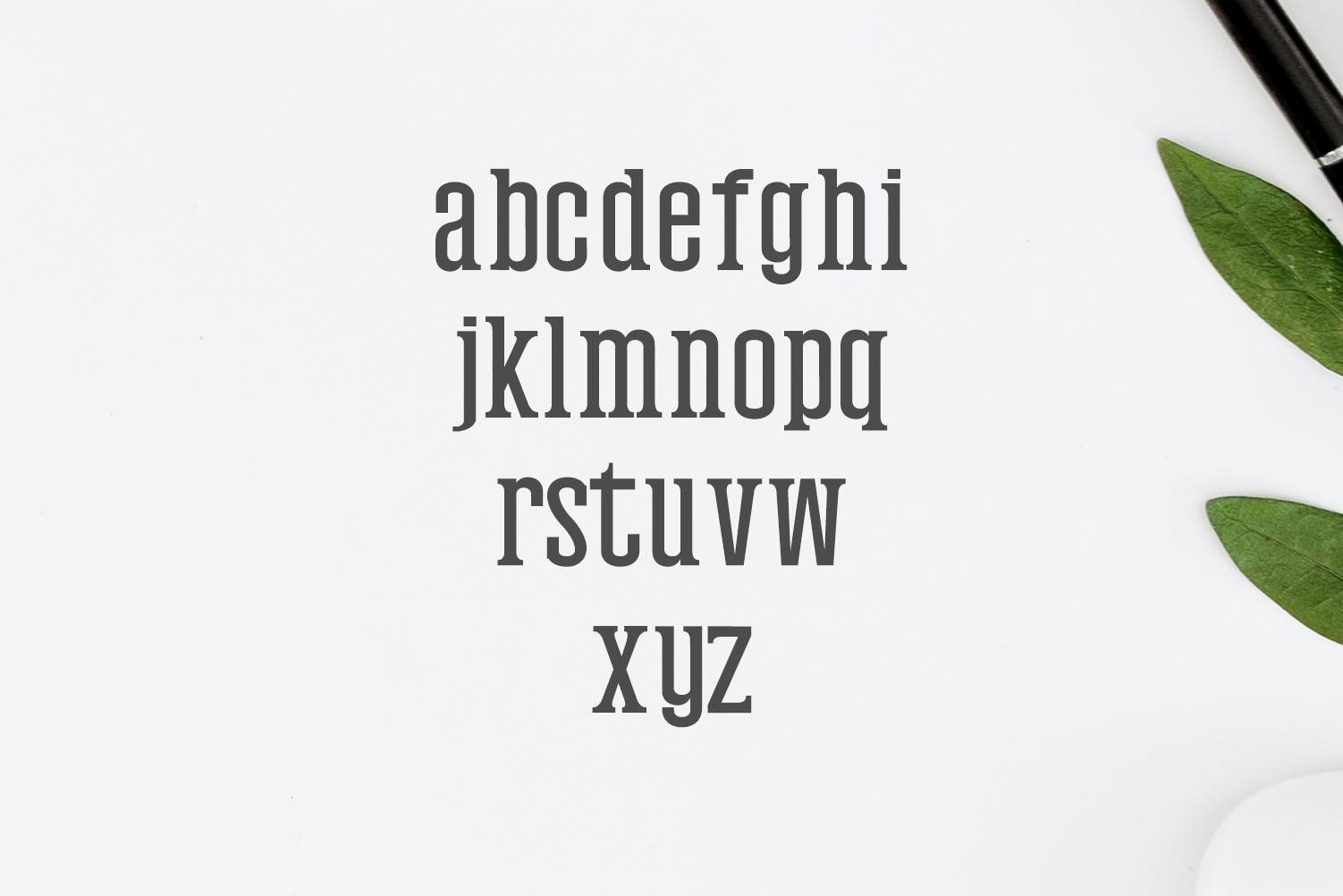 Mahlon Serif 3 Font Family Pack example image 4