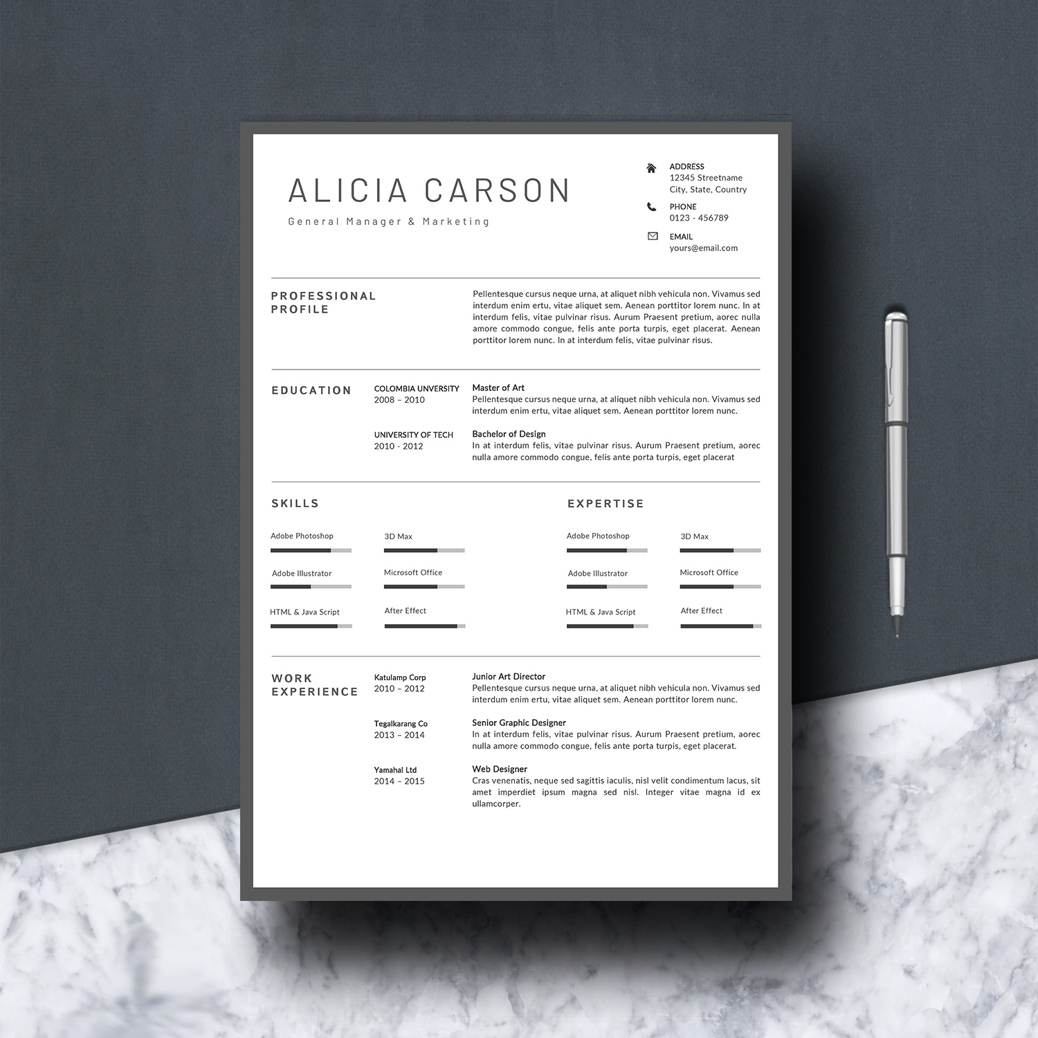 Resume Template 3 Pages example image 3