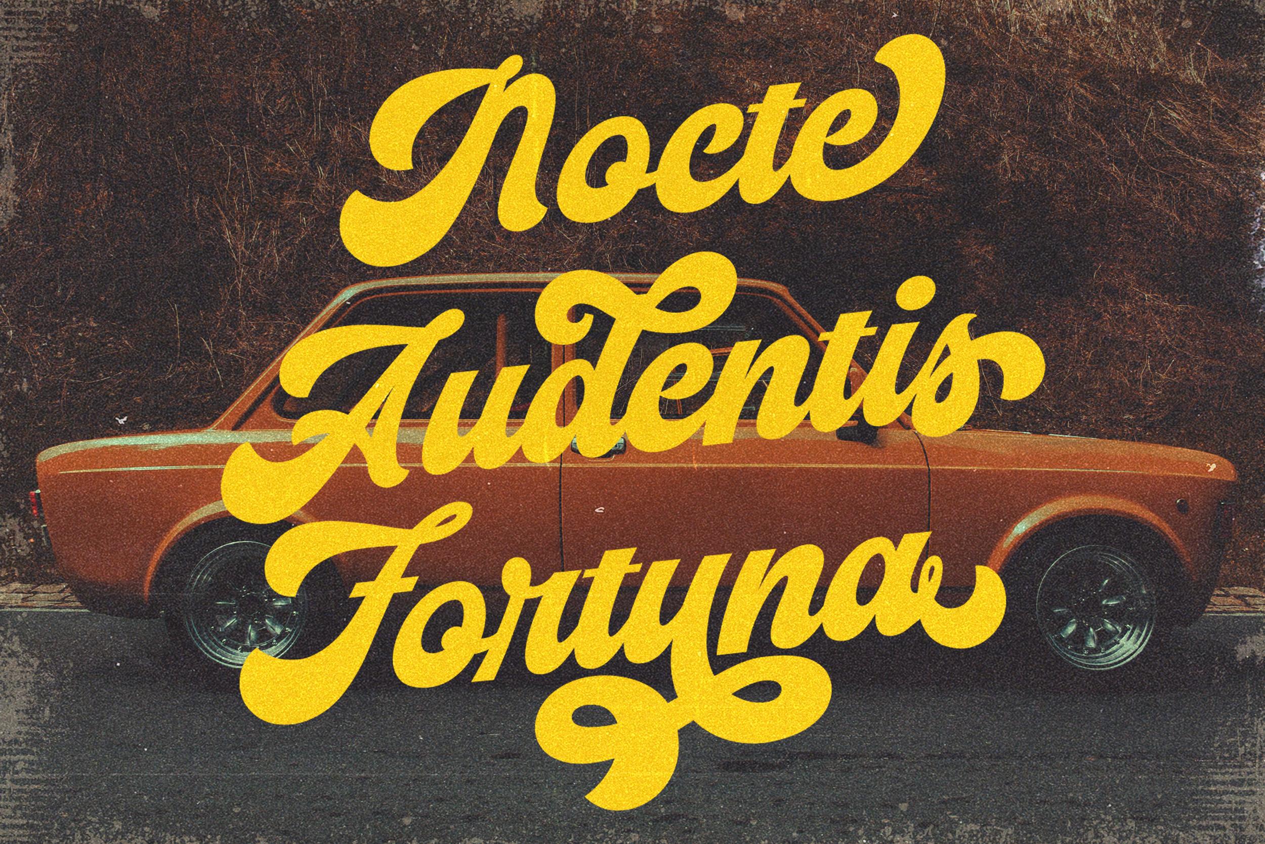 Vignettic Font example image 6