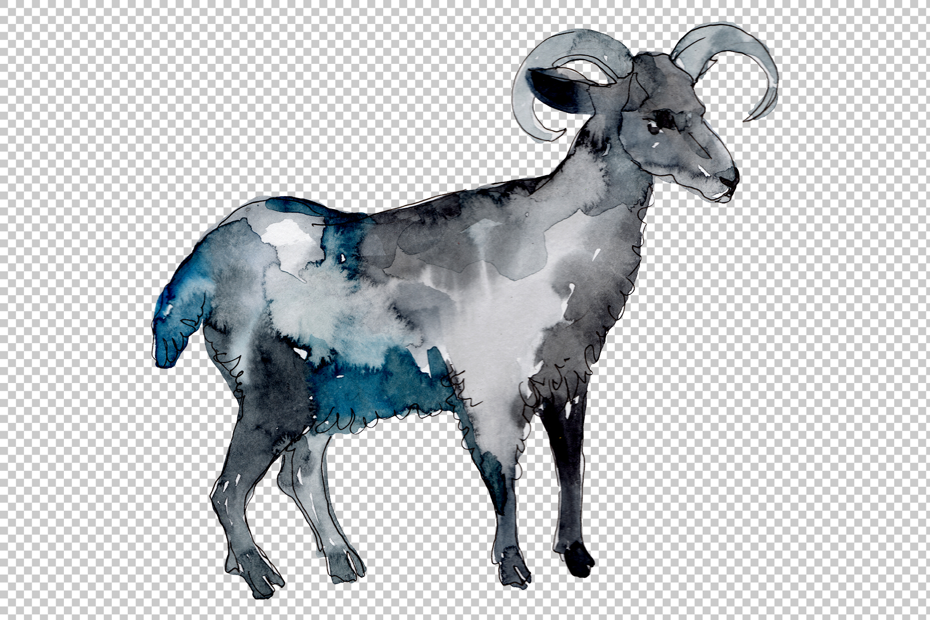 Farm animals Ram Watercolor png example image 3