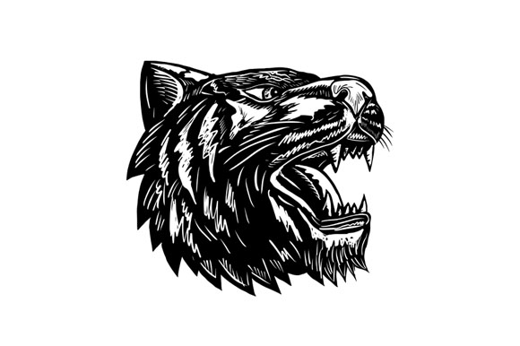 Growling Tiger Woodcut Black and White example image 1