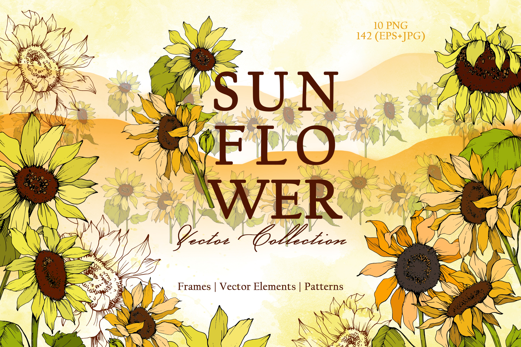 Sunflower Vector Collection example image 1