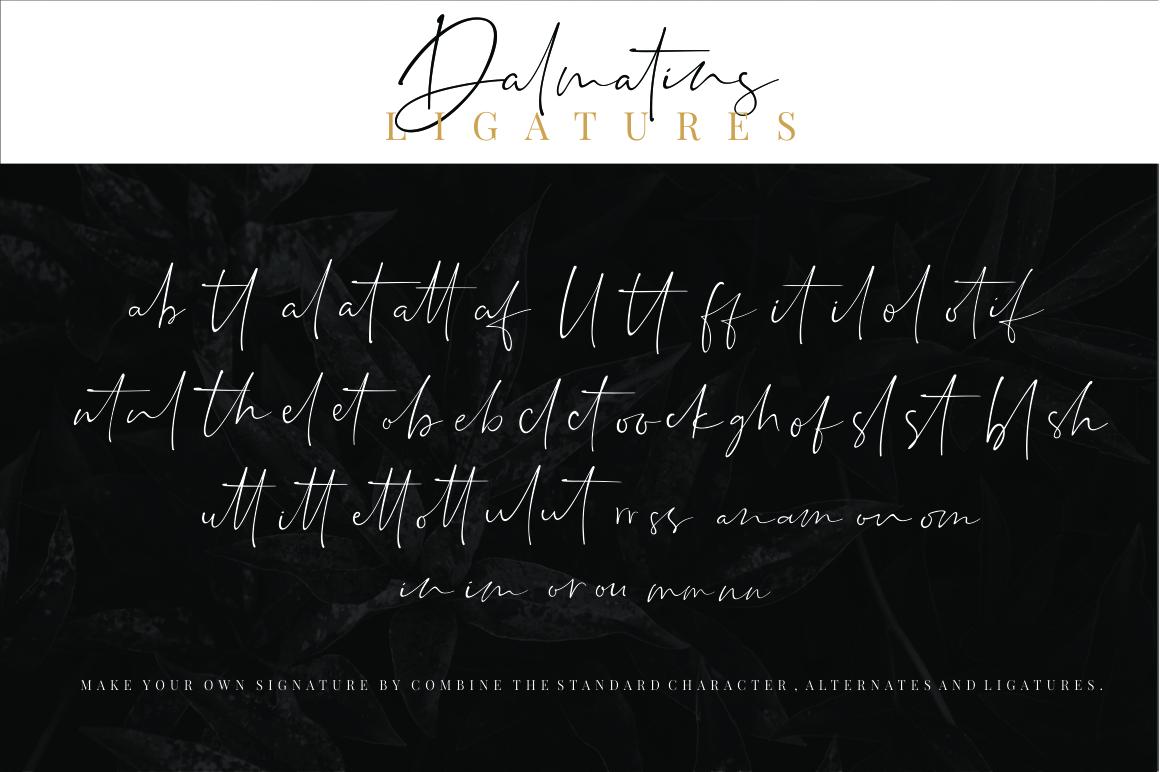 Dalmatins // Elegant Signature Font example image 15