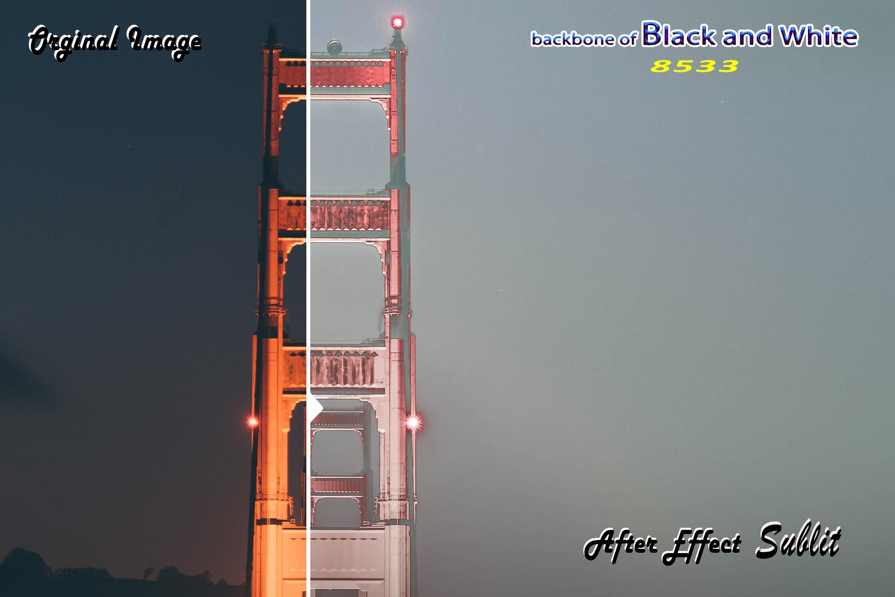 Backbone of Black and White Lightroom Presets example image 3