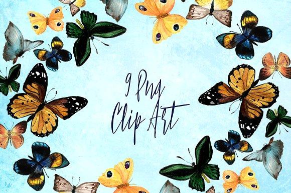 9 Watercolor Butterflies Clip Art example image 1