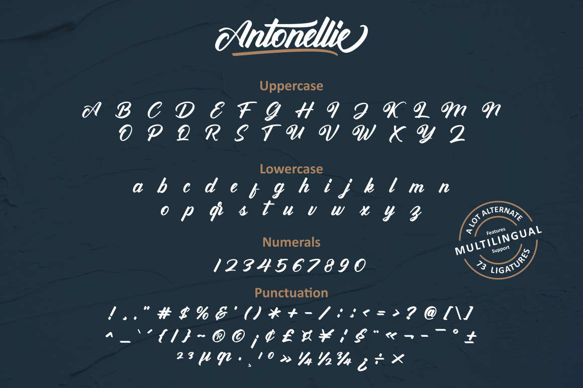 Antonellie Hand Lettered Script example image 12