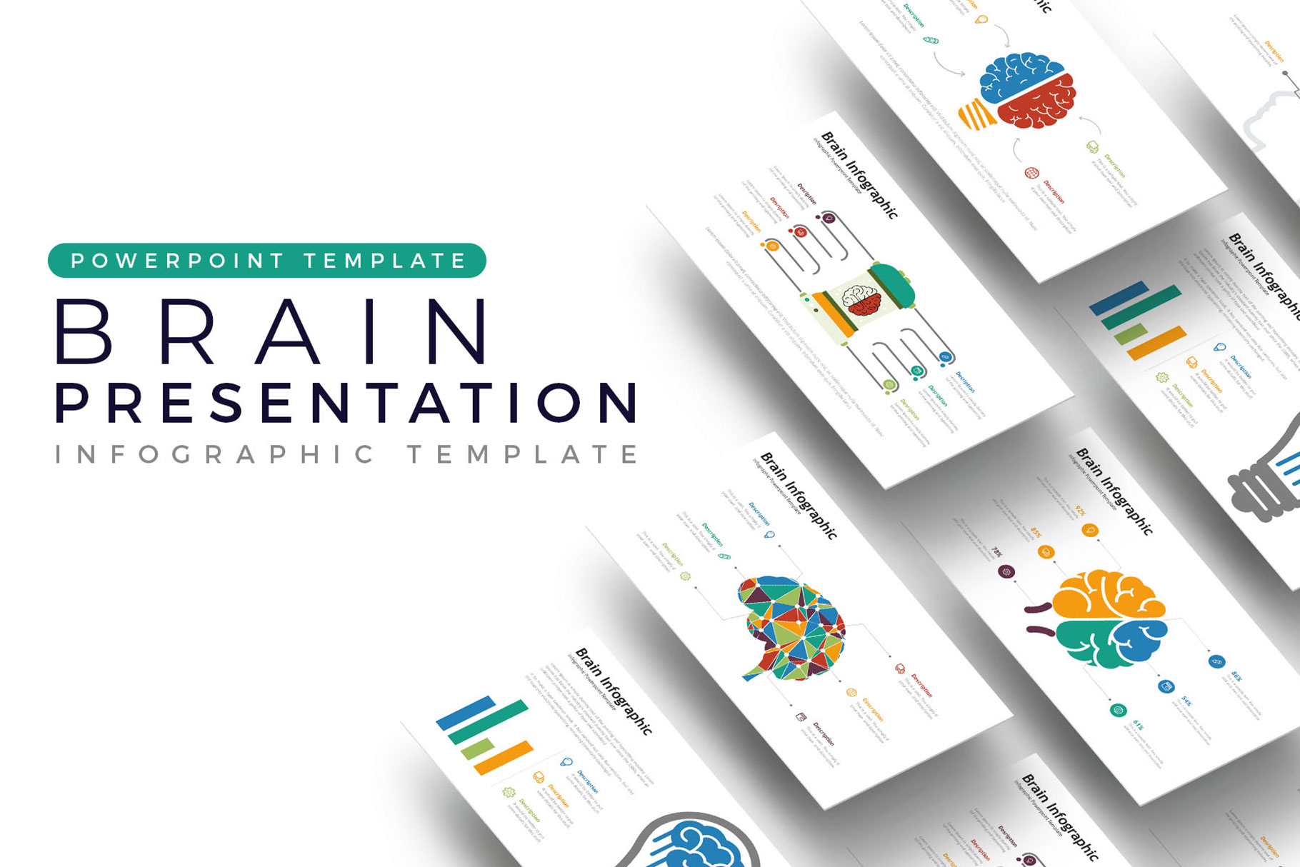 Brain Presentation - Infographic Template example image 1