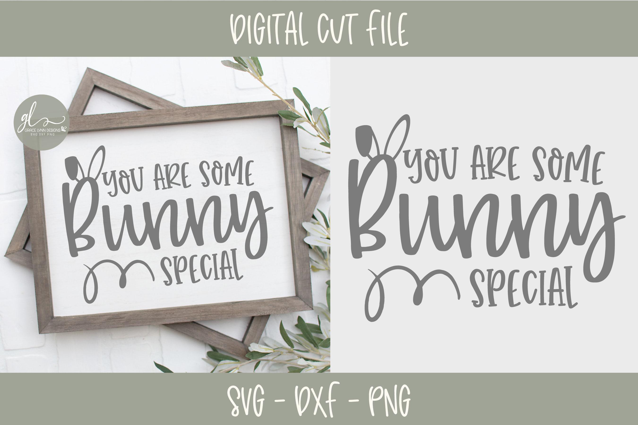Easter SVG Bundle - 12 Easter Designs - SVG, DXF & PNG example image 3
