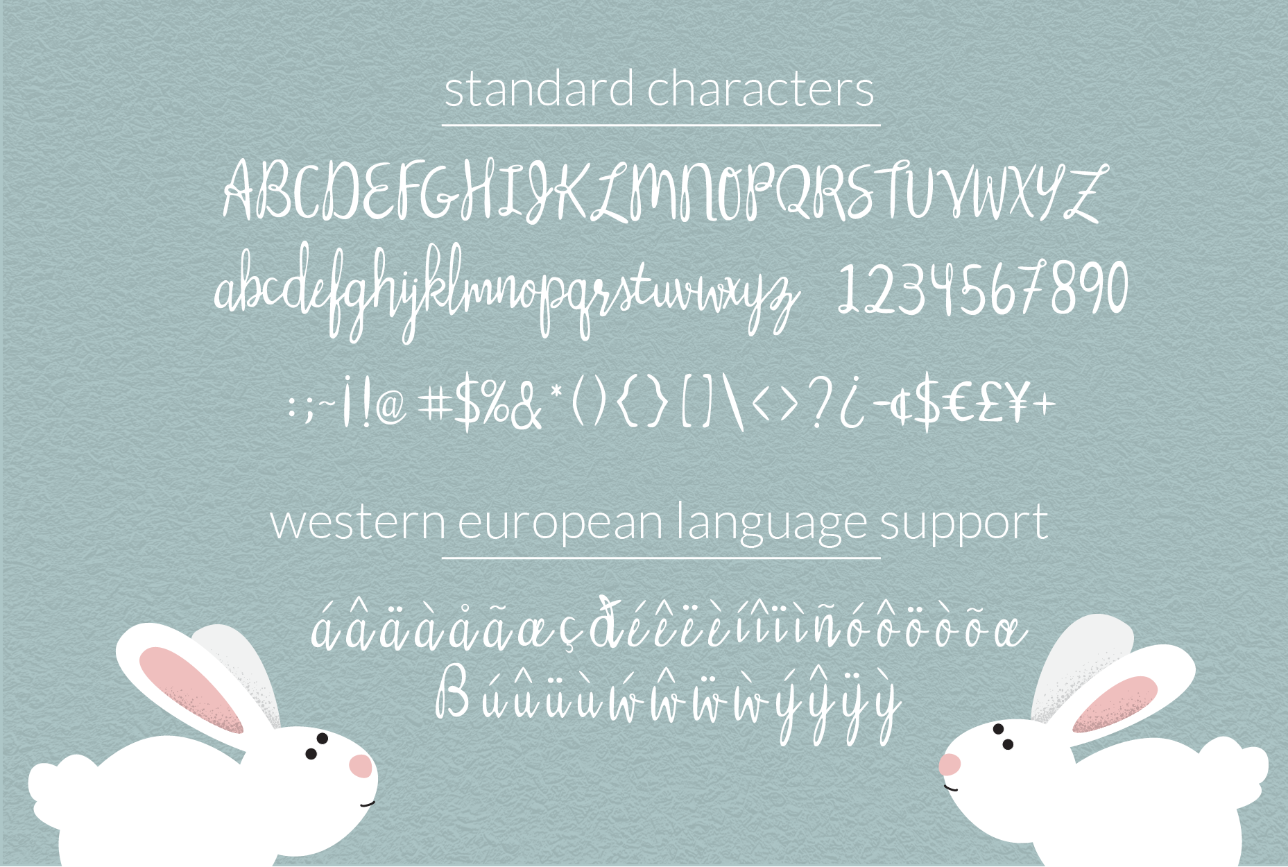 Silly Rabbit Script Font example image 4