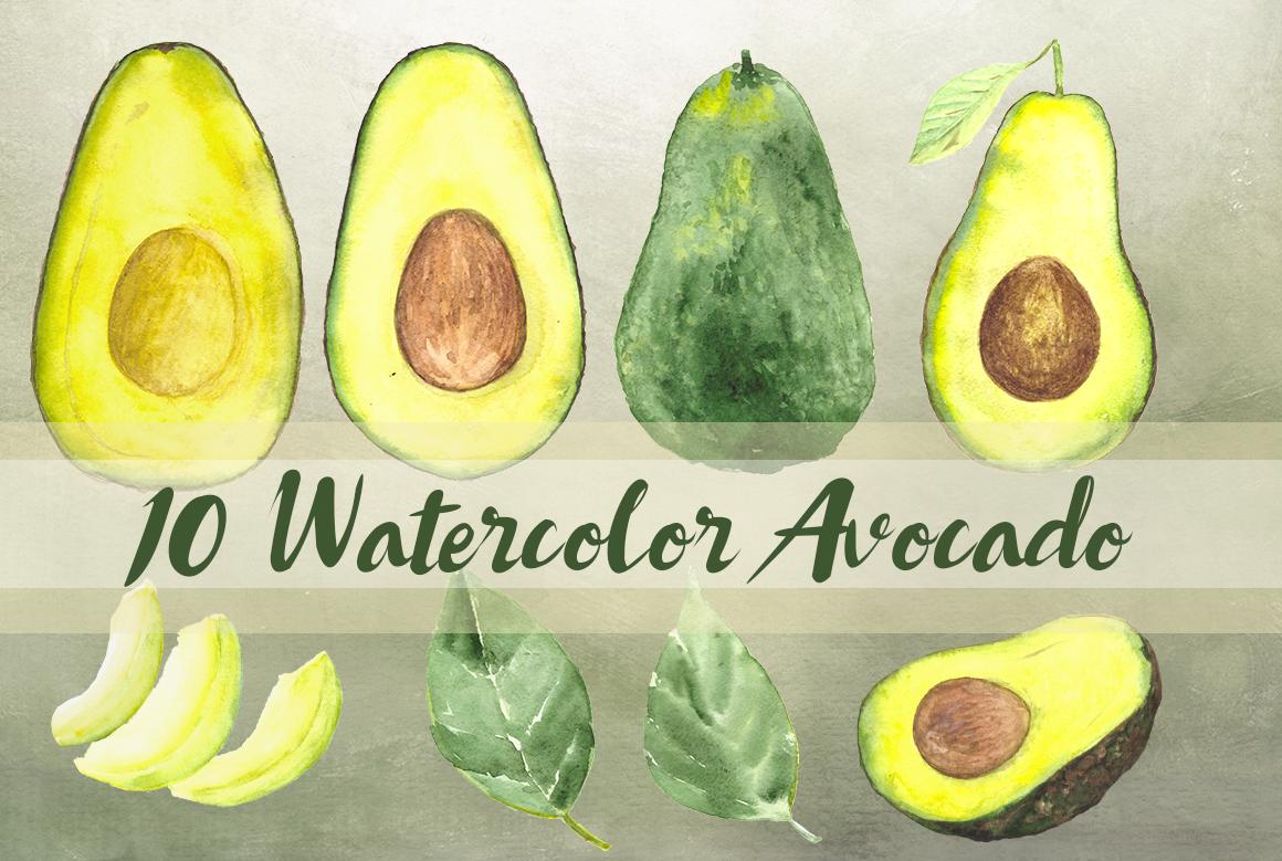 10 Watercolor Avocado Clip Art Set example image 1