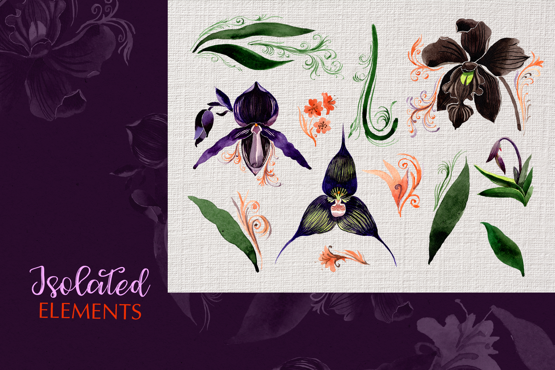 Orchid black Watercolor png example image 6