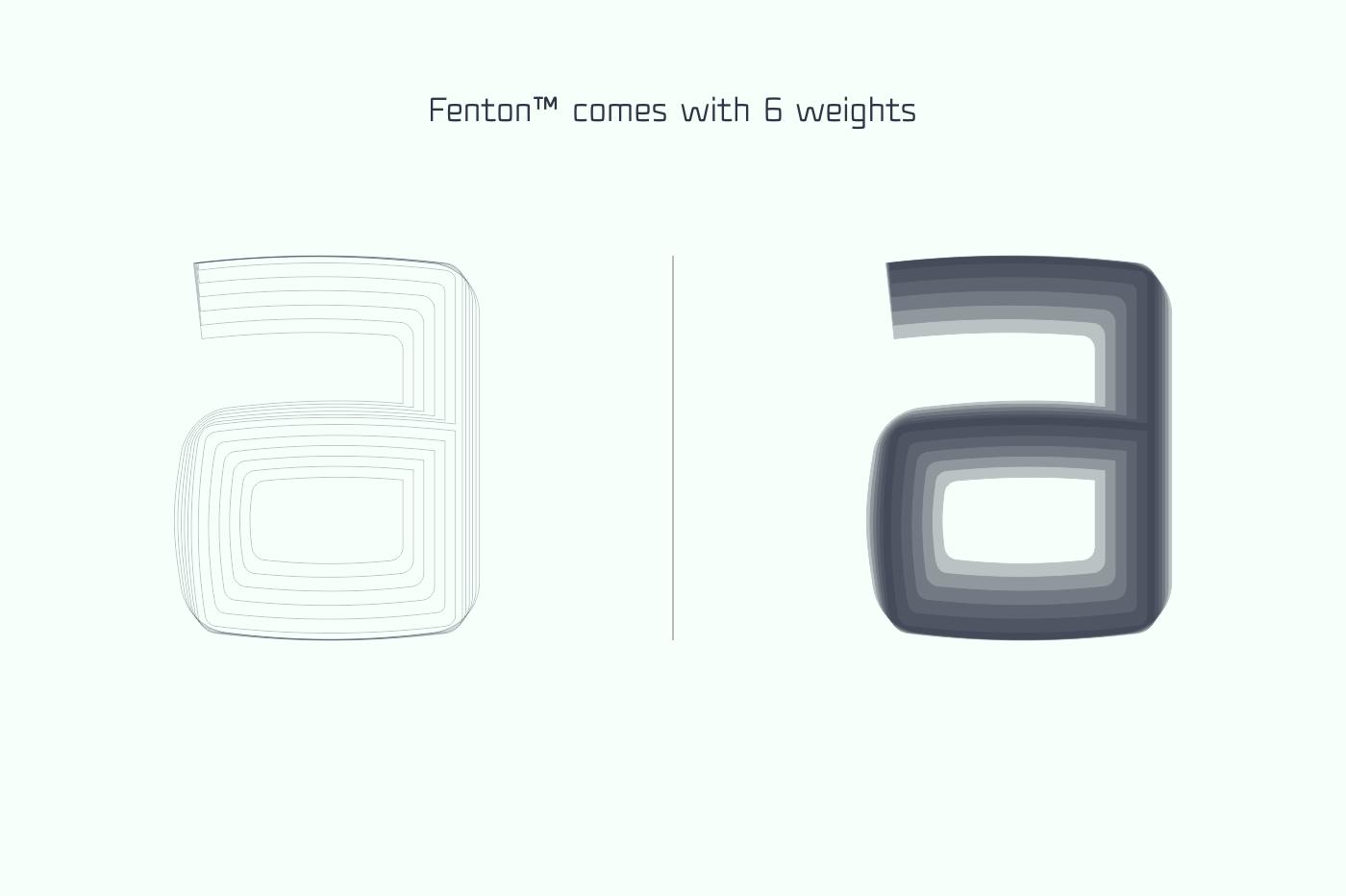 Fenton Typeface Family [75% OFF] example image 3